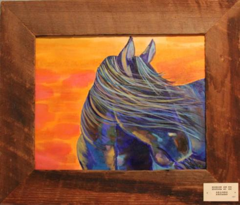 Horse of Fifty Shades